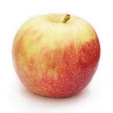 Ябълка - Петровка